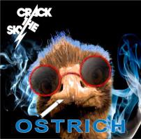Ostrich - Crack the Sky